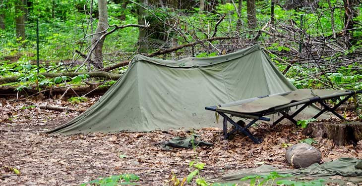 camping cot in the woods